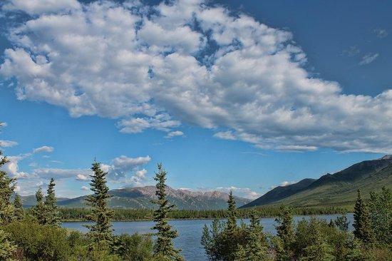 Denali Lakeview Inn : View: Purple Caribou room