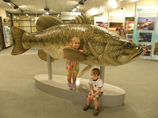 Go Fish Education Center: This is one big fish!!!!