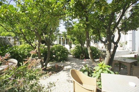 Hotel Supetar: Quiet snd shady garden