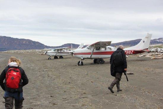 Alaska bear adventures k bay air