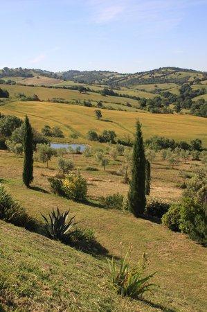 Quercia Rossa Farmhouse: 360°