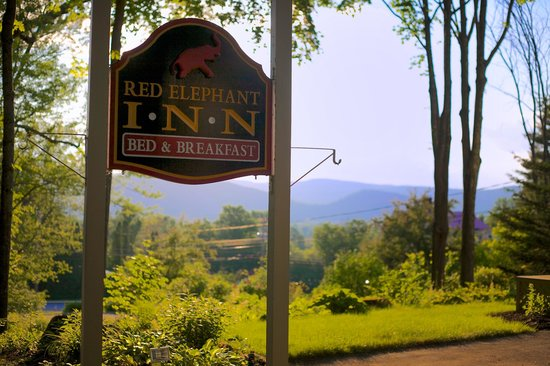 Red Elephant Inn Bed & Breakfast: This is basically the view from the porch. Nice, huh?