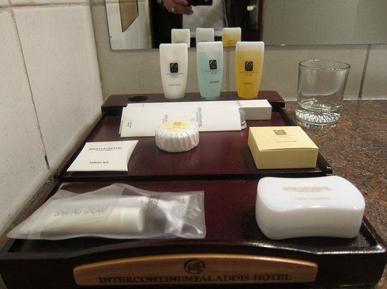 Hotel Intercontinental-Addis: Amenities