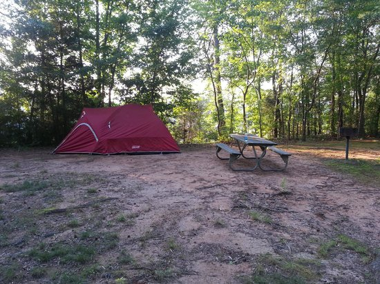 Carowinds Camp Wilderness Resort: Rocky camp site must have tent pad