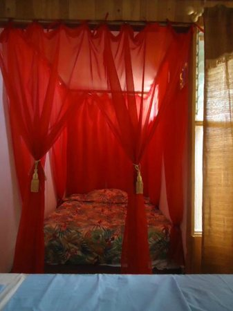 Costa Rica Love Apartments & rooms : share dorm