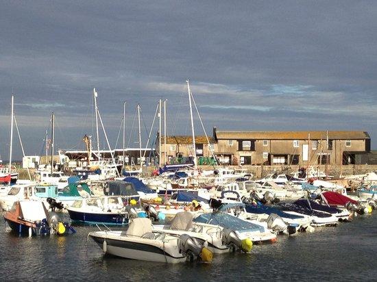 Cleveland Bed & Breakfast: Lyme Regis Harbour