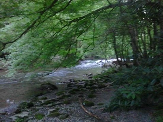 Motel 6 Gatlinburg Smoky Mountains: River behind hotel down the pet walk trail