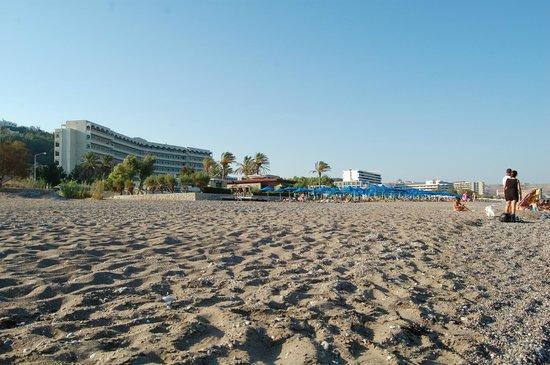 Ammades Epsilon Apartments : The beach