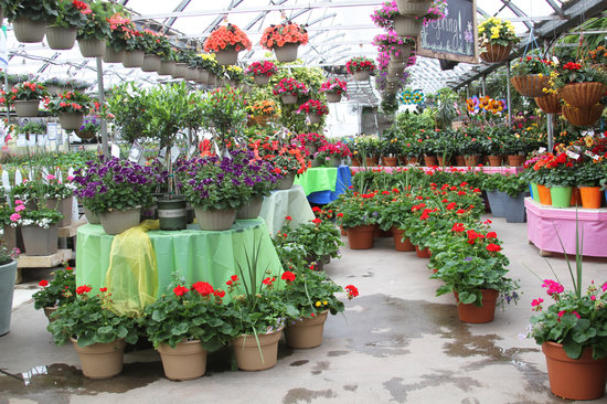All Seasons Garden Center