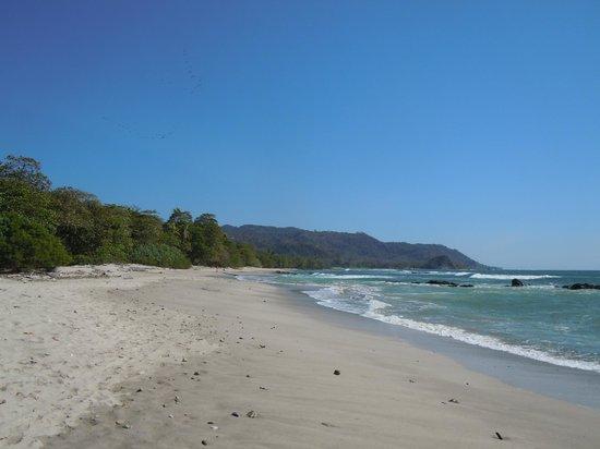 Mal Pais Surf Camp & Resort: Beach