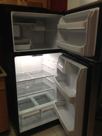 Residence Inn Florence : ice maker in fridge :)