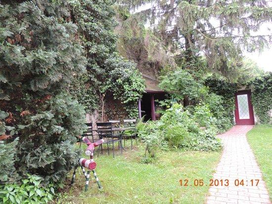 Gasthof Zum Goldenen Anker: nice backyard