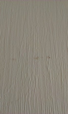 North Stafford Hotel: snot smeered on wall