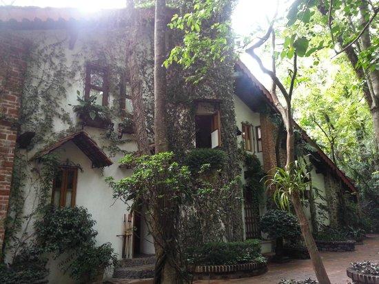 La Casa de Los Arboles