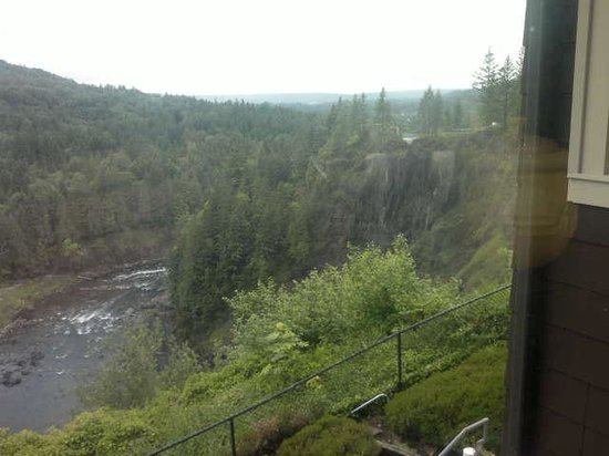 Salish Lodge & Spa: View from dining room