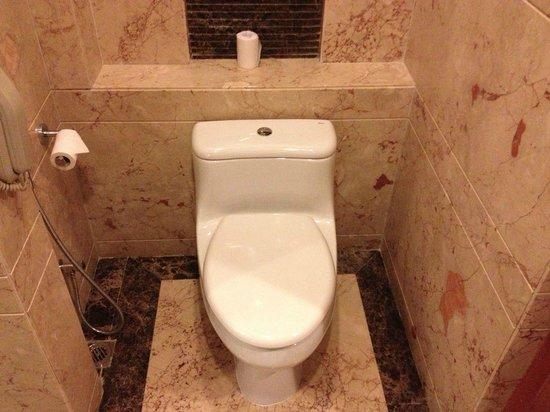 Radisson Blu Plaza Delhi: WC Roca
