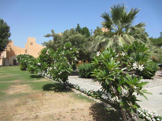 smartline Ras Al Khaimah Beach Resort: Durch die Hotelanlage
