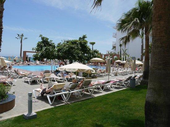 Hotel Riu Nautilus: Pool area