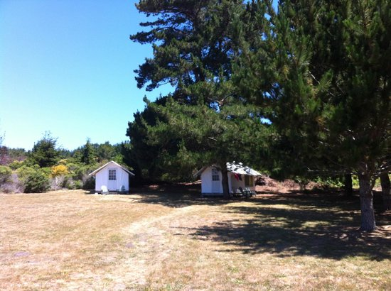 Costanoa Coastal Lodge & Camp: Our cabin on the right (P43).