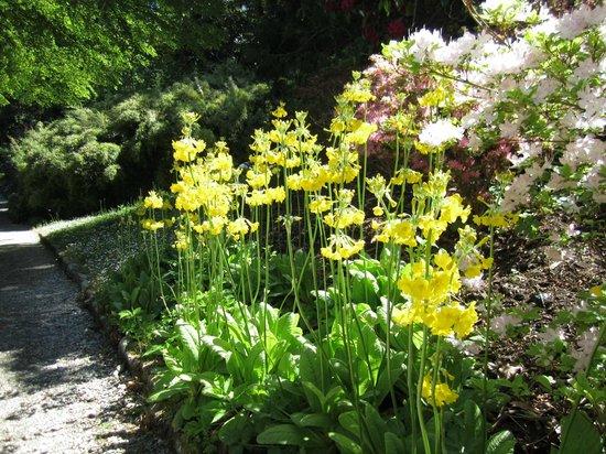Κάστρο Glenveagh: In The Garden...nicest part