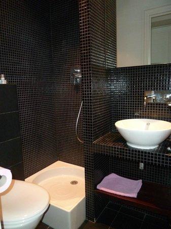 Hotel Beausejour Ranelagh : salle de bain de la 2ème chambre