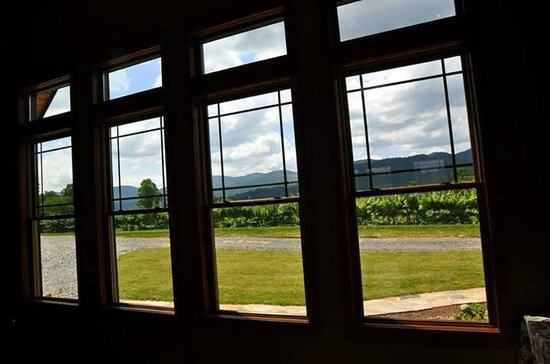 Addison Farms Vineyard: View from the tasting room