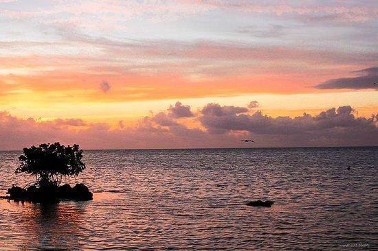 Deer Run Bed & Breakfast: beautiful sunrises