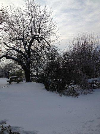 B&B Ca' Bianca: giardino in inverno