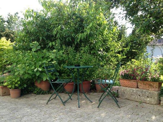 B&B Ca' Bianca: giardino
