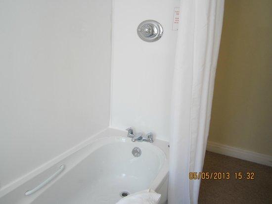 Britannia Country House Hotel & Spa: Shower curtain was clean.