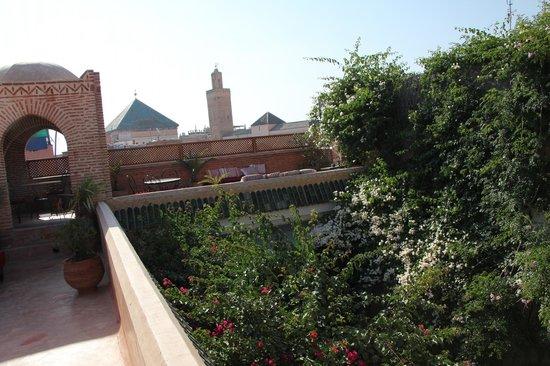 Riad Samsara: Dachterasse
