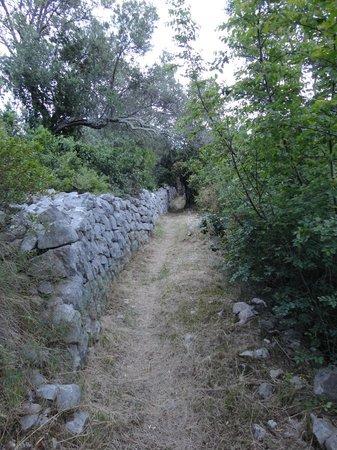 La Villa: Ancient path on Lopud