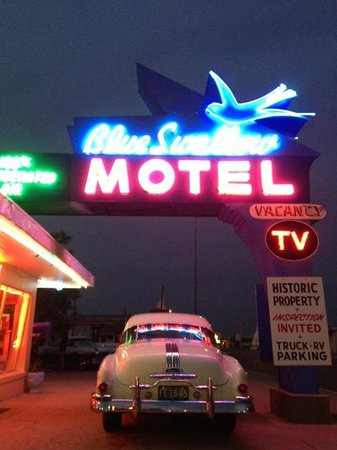 Blue Swallow Motel: So cool!