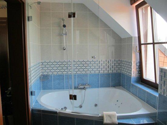 Na Doline: Anděla whirpool room - bathroom