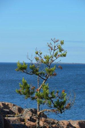 HavsVidden, BW Premier Collection: Utsikt från stranden