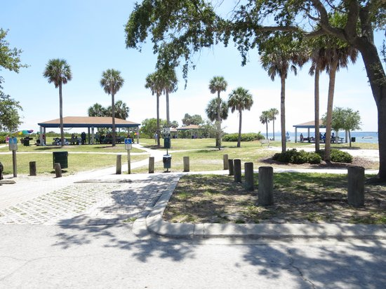 Picnic Island Park : The Size of the Park is Big.