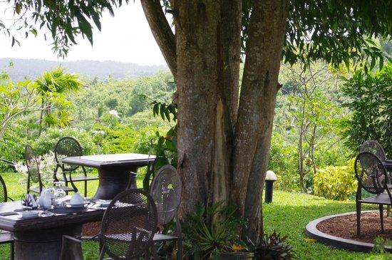 Villa Mayurana by Edwards Collection: Breakfast Area