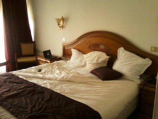 Hotel Saint George El Djazair : la chambre