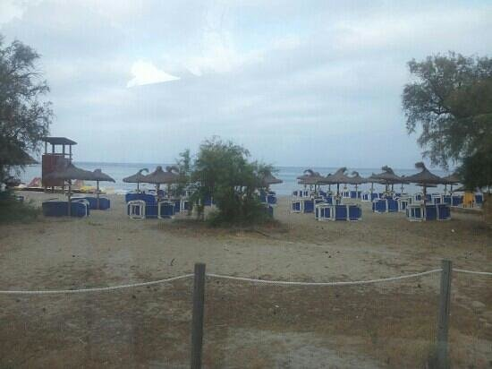 Universal Hotel Laguna: Vue plage depuis piscine