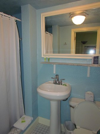 Sea Dell Motel: Bathroom (shower to the left, nothing more to see)