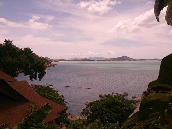The Kala Samui: Stratus Skyline Room Balcony View
