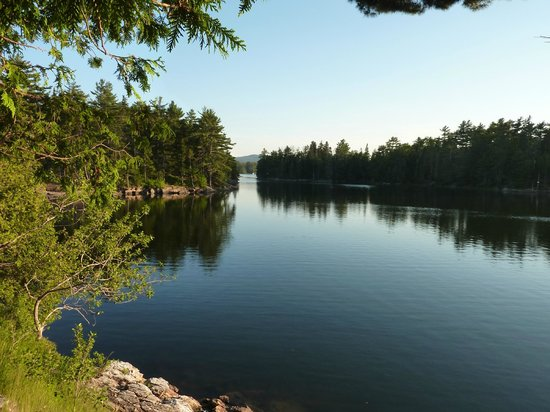 Mount Desert Campground: The view from our campsite