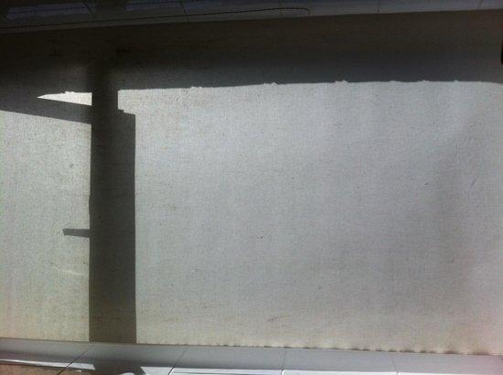 Gwesty Glan Aber Hotel: Mouldy bathroom blind