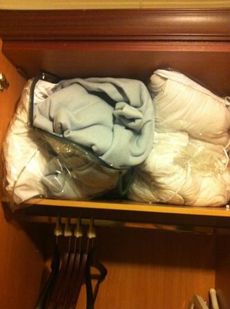 The Thames Hotel: dirty old blanket, duvet and pillows in the wardrobe opened it and this is how it was