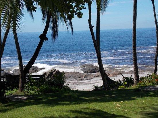Ylang Ylang Beach Resort: View from the restaurant