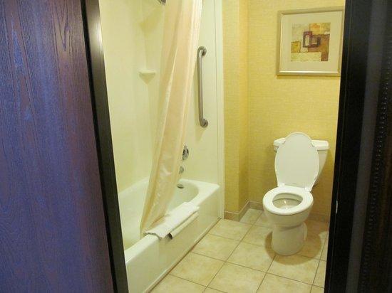Comfort Suites Prescott Valley : nice clean bathroom