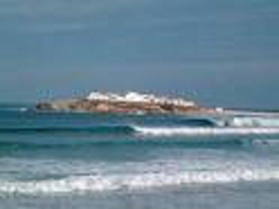 Restaurante O Febras : A bela ilha do BALEAL aqui tão perto...