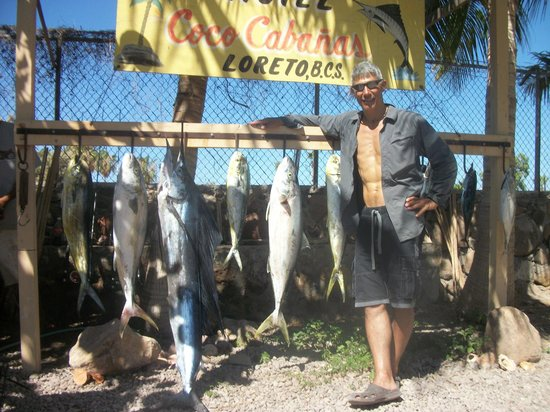 Coco Cabanas Loreto: Every fish specie in Loreto Bay