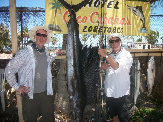 Coco Cabanas Loreto: Day one and 7 ft Sailfish