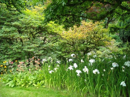 Elk Rock Garden: Flowers Abound